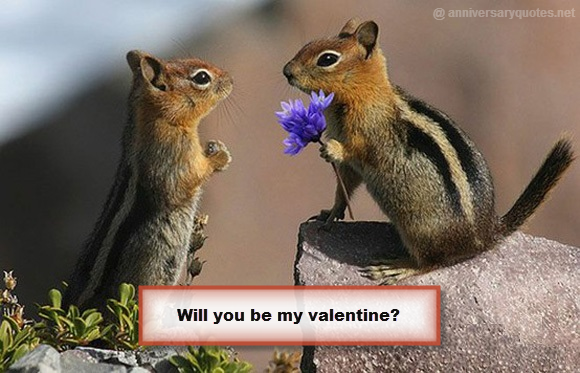 Will You Be My valentine Squirells Flower