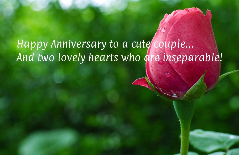 Wedding Anniversary Quotes For A Best Friend Wishes