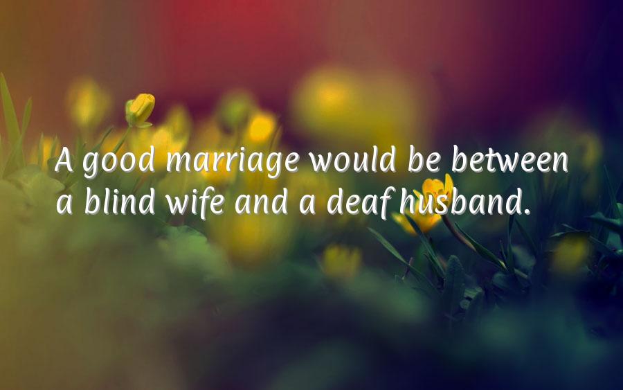 Stupid marriage anniversary quotes quotesgram